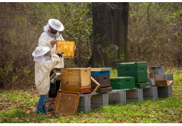 Kalendář včelařů